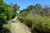 141026 - 4932 Bike Trail - Key Biscayne, FL
