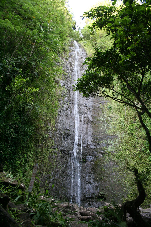 Manoa Falls, once reserved for the royal family.