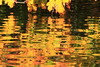 Autumn Color- Nugget Lake