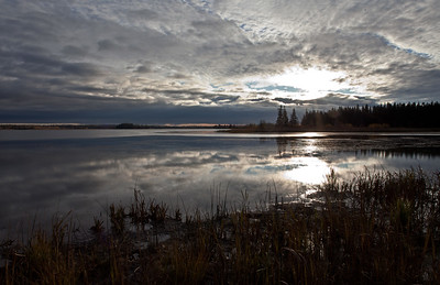 Sunrise, Tundra Narrows, Elk Island National Park
