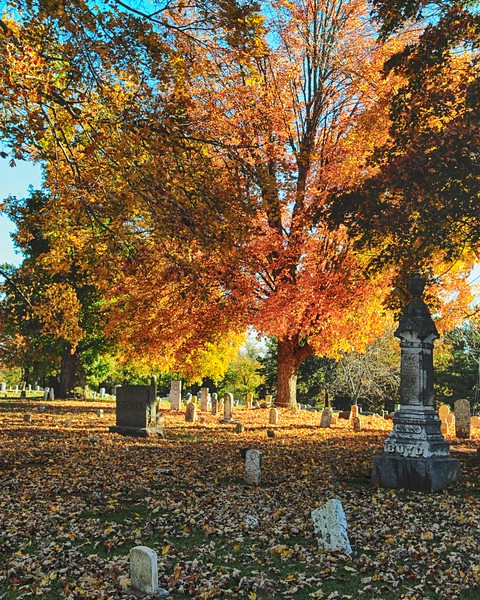 2014 Fall Foliage-1
