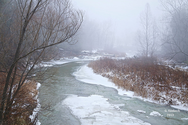 A foggy day in Rouge Park, Tywnn Rivers bridge