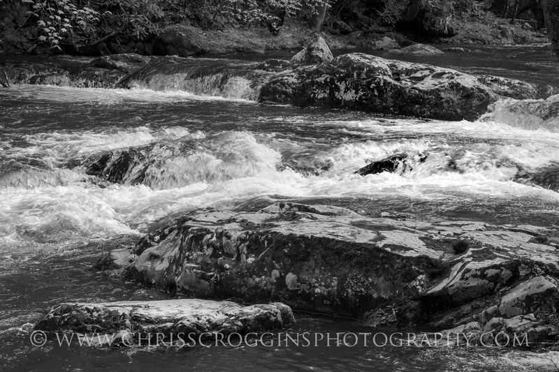 Little Pigeon River 2