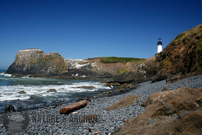 Yaquina Head Beach, OR