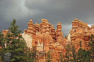 Canyon Floor Hoodoos, Bryce Canyon, UT