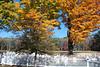 Fall scene pics 003