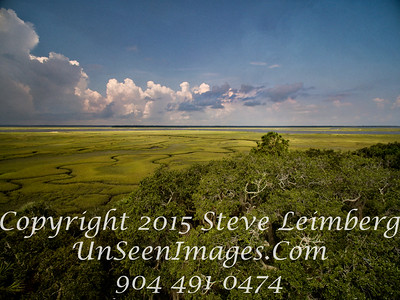 Looking Out at the Marsh - Copyright 2015 Steve Leimberg - UnSeenImages Com DJI_0013
