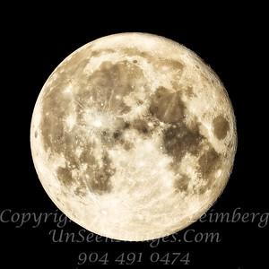 Supermoon II - Nov 14 2016 Copyright Steve Leimberg - UnSeenImages Com _Z2A9363