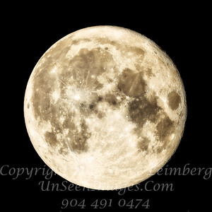 Supermoon II - Nov 14 2016 Copyright Steve Leimberg - UnSeenImages Com _Z2A9363