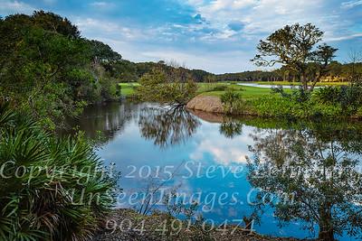 Omni Plantation - Copyright 2015 Steve Leimberg - UnSeenImages Com L1000726