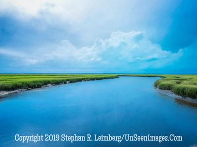 Marsh at Walker's Landing - PAINTING - Copyright 2018 Steve Leimberg UnSeenImages Com _DSF6756