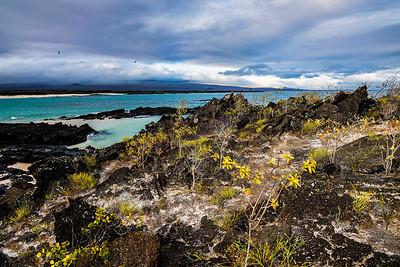 Galapagos Overlook Copyright 2020 Steve Leimbeg UnSeenImages Com_DSC6135