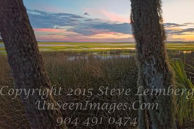 Marsh - Painting - Copyright 2016 Steve Leimberg - UnSeenImages Com L1030553