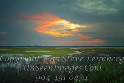 Marsh at 2 Red Cedar - PAINTING - Copyright 2016 Steve Leimberg - UnSeenImages Com L1020264