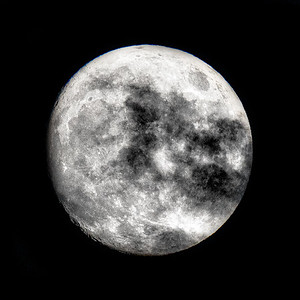 Luna Mia Copyright 2020 Steve Leimberg UnSeenImages Com _DSC7465
