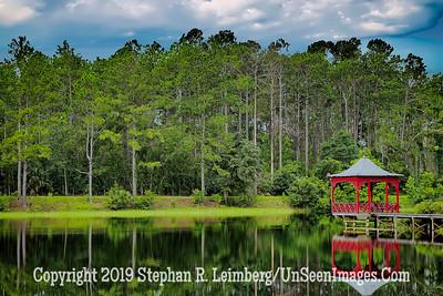 Scene at the Lake at White Oak - Copyright 2018 Steve Leimberg UnSeenImages Com L1300656