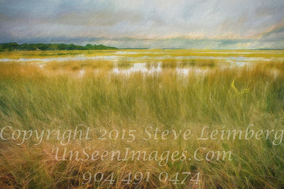 Marsh Before a Storm - PAINTING - Copyright 2015 Steve Leimberg - UnSeenImages Com _Z2A9457