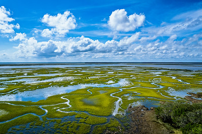 Marsh and  Clouds Copyright 2021 Steve Leimberg UnSeenImages Com 0019 copy