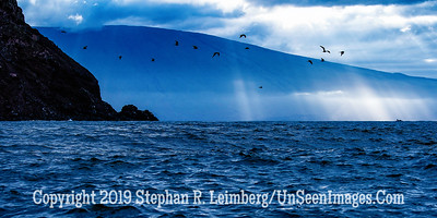 Blue Morning Copyright 2019 Steve Leimberg UnSeenImages Com _DSC1593