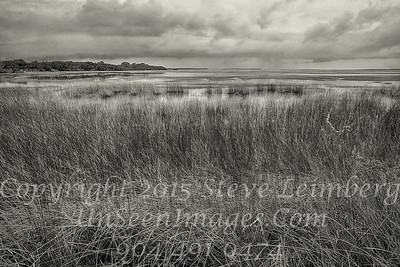 Marsh Before a Storm - B&W Copyright 2015 Steve Leimberg - UnSeenImages Com _Z2A9457