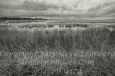 Marsh Before a Storm - B&W Copyright 2015 Steve Leimberg - UnSeenImages Com _Z2A9457