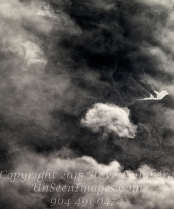 Clouds Illusions III - B&W Copyright 2015 Steve Leimberg - UnSeenImages Com _Z2A9140