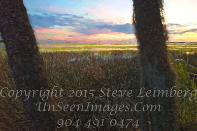 Marsh - Painting II - Copyright 2016 Steve Leimberg - UnSeenImages Com L1030553