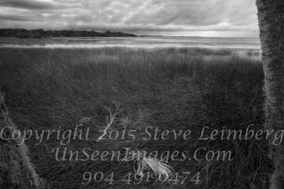 Marsh before a Storm - B&W  - Copyright 2015 Steve Leimberg - UnSeenImages Com