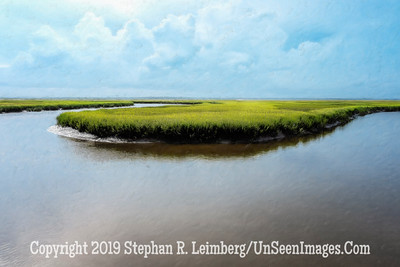 Marsh at Walker's Landing - PAINTING Copyright 2018 Steve Leimberg UnSeenImages Com _DSF6768