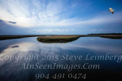 Marsh from Walker's Landing 1 - PAINTING - Copyright 2016 Steve Leimberg - UnSeenimages Com _Z2A9579