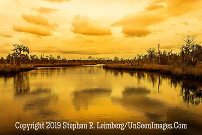 White Oak Landscape - Copyright 2018 Steve Leimberg UnSeenImages Com L1190923
