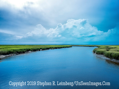 Marsh at Walker's Landing - Copyright 2018 Steve Leimberg UnSeenImages Com _DSF6756