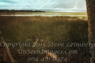 Marsh before a Storm - PAINTING - x  Copyright 2015 Steve Leimberg - UnSeenImages Com