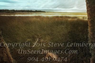 Marsh before a Storm - PAINTING - x  Copyright 2015 Steve Leimberg - UnSeenImages Com