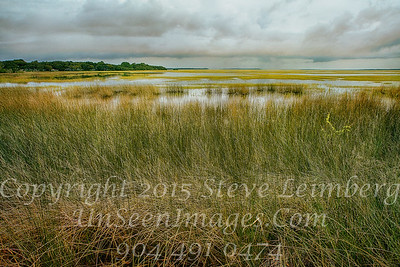 Marsh Before a Storm - Copyright 2015 Steve Leimberg - UnSeenImages Com _Z2A9457