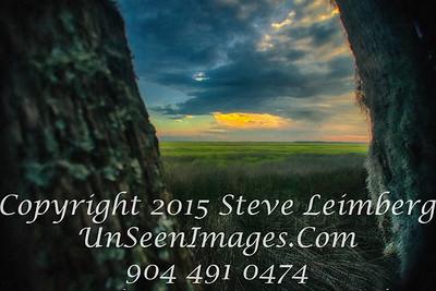 Sunset over Marsh - Amelia Island PAINTING - Copyright 2015 Steve Leimberg - UnSeenImages Com _H1R6747