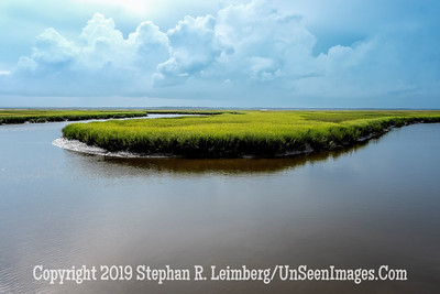 Marsh at Walker's Landing - Copyright 2018 Steve Leimberg UnSeenImages Com _DSF6768
