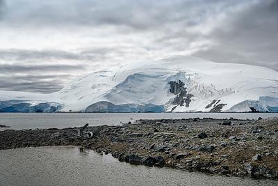 Landscape in Antarctica Copyright 2020 Steve Leimberg UnSeenImages Com _DSF5233