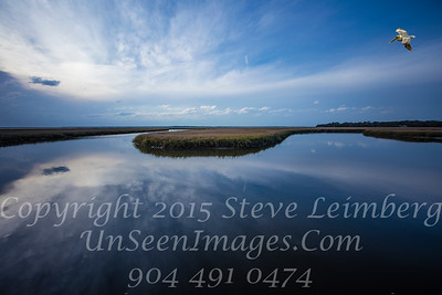 Marsh from Walker's Landing 1 - Copyright 2016 Steve Leimberg - UnSeenimages Com _Z2A9579