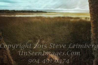 Marsh before a Storm - PAINTING - Copyright 2015 Steve Leimberg - UnSeenImages Com