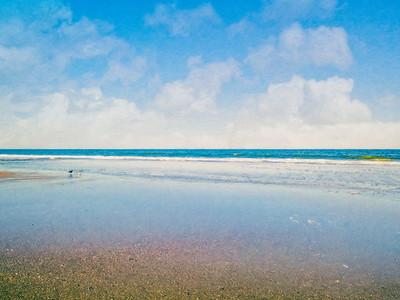 American Beach  Copyright 2021 Steve Leimberg UnSeenImages Com _0039