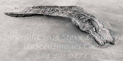 Driftwood in the Sand - Copyright 2015 Steve Leimberg - UnSeenImages Com _Z2A8768