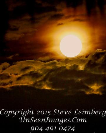 Moon Through Trees - Copyright 2015 Steve Leimberg - UnSeenImages Com _Z2A1735