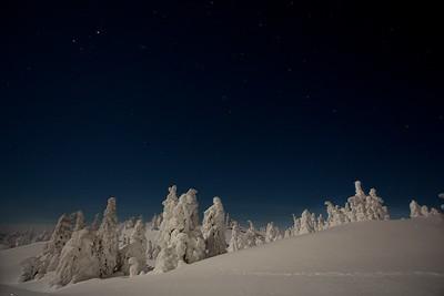 Winterwunderland um Mitternacht auf dem Akkanolke bei Arvidsjaur - Lappland, Schweden  Winter Wonderland at midnight on the Akkanolke near Arvidsjaur - Lapland, Sweden