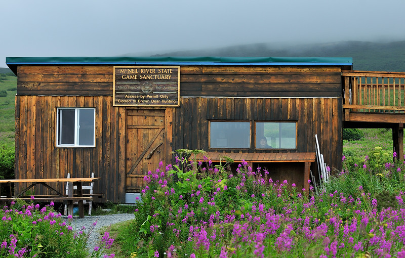 """BBR-2010.8.11#01. The """"chow"""" and shelter cabin at the McNeil River Game Sanctuary, Alaska."""