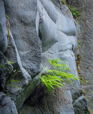 Lava Canyon, Mt. Saint Helen's