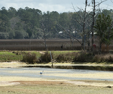 Middle Pond, drained for maintence