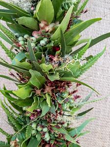 Koa, aʻaliʻi, ʻūliei, lichen, amaʻu, ʻakiʻaki, and pūkiawe