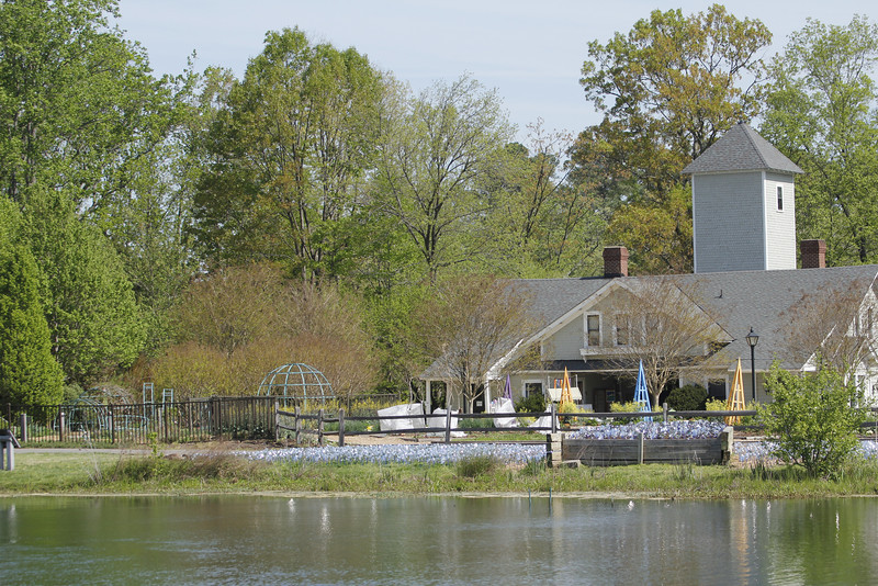 view of the children's garden across the pond