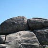 Old Rag boulder pile @ summit